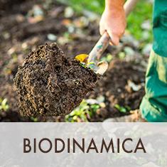 biodinamica